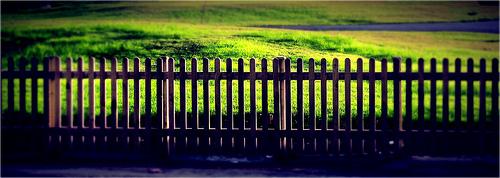 grassgreener
